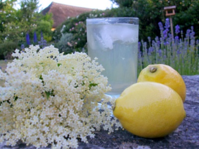 could be more English than a glass of homemade elderflower cordial ...