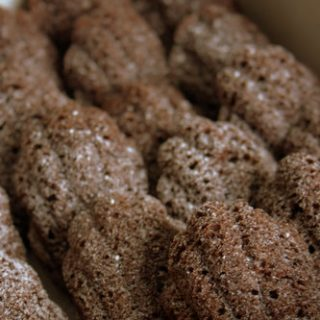 Double Chocolate Madeleines