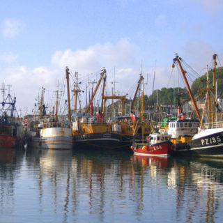 Travel: Newlyn Fish Market