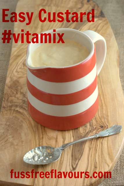 Vitamix Custard - Captioned