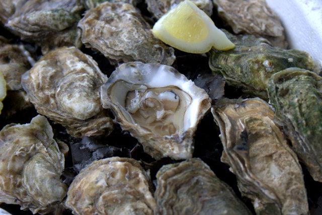 Golfe Du Morbihan Oysters