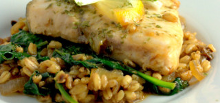 Halibut and spelt risotto plated