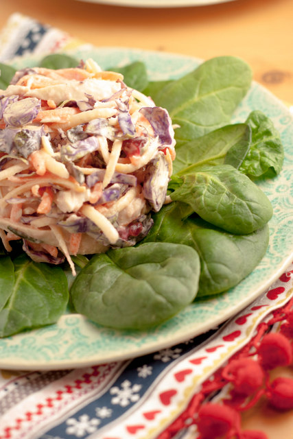 Turkey Cranberry Tahini Coleslaw