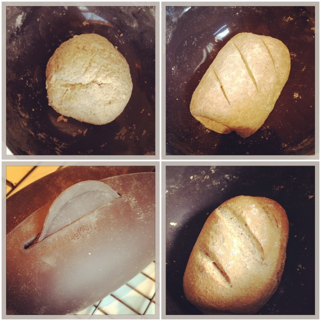 Stages of making bread in the Lékué bread maker