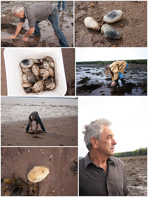 Clam Digging in New Brunswick
