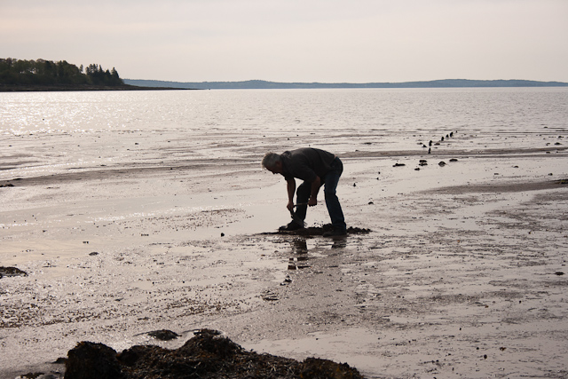 Clam Digging in New Brunswick