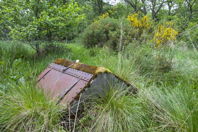 Aberlour Well