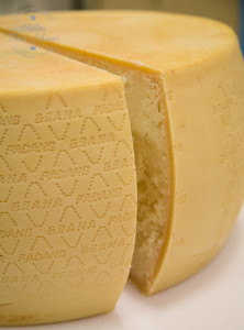 Grana Padano PDO freshly cut