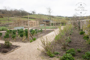 River Cottage HQ kitchen garden
