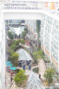 Harmony of the Seas - Central Park