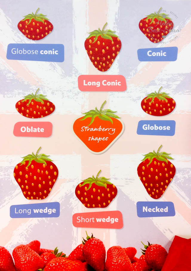 Do you know your globose conic from your short wedge? A handy guide to strawberry shapes!