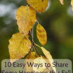10 ways to give a little back to others this autumn