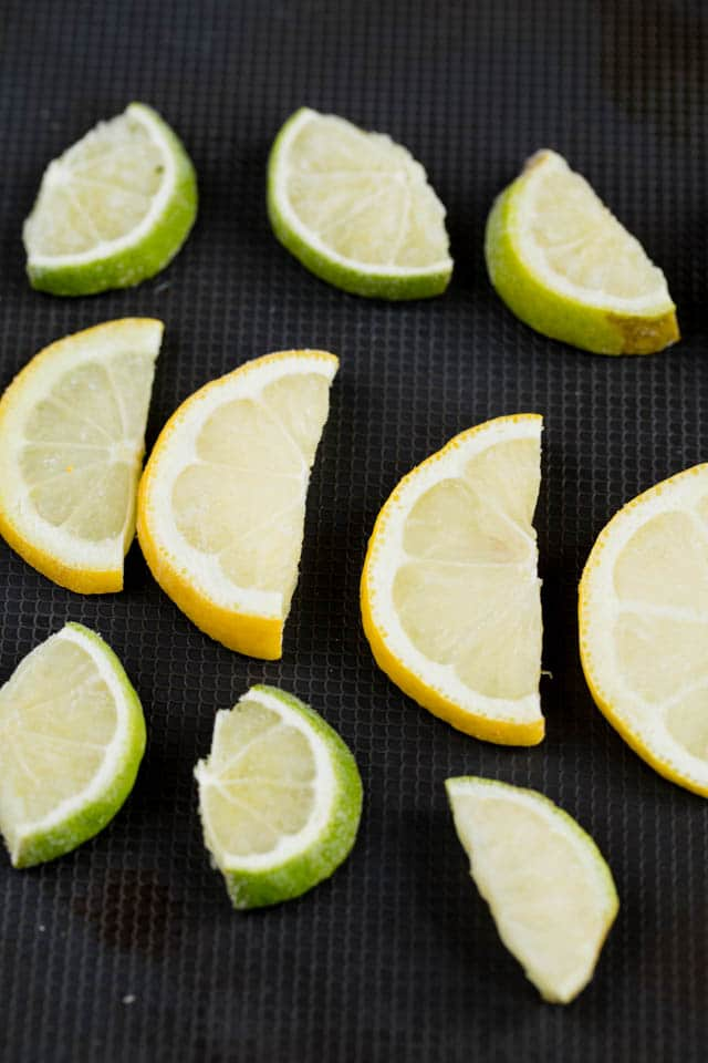 Frozen lemon and lime are great garnish in the perfect gin and tonic