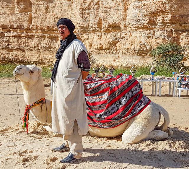 Tunisia - Tunisian Berber and camel