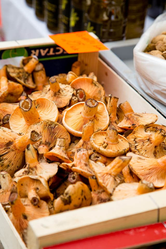 Mushrooms for sale in the market of Ventalló Catalonia