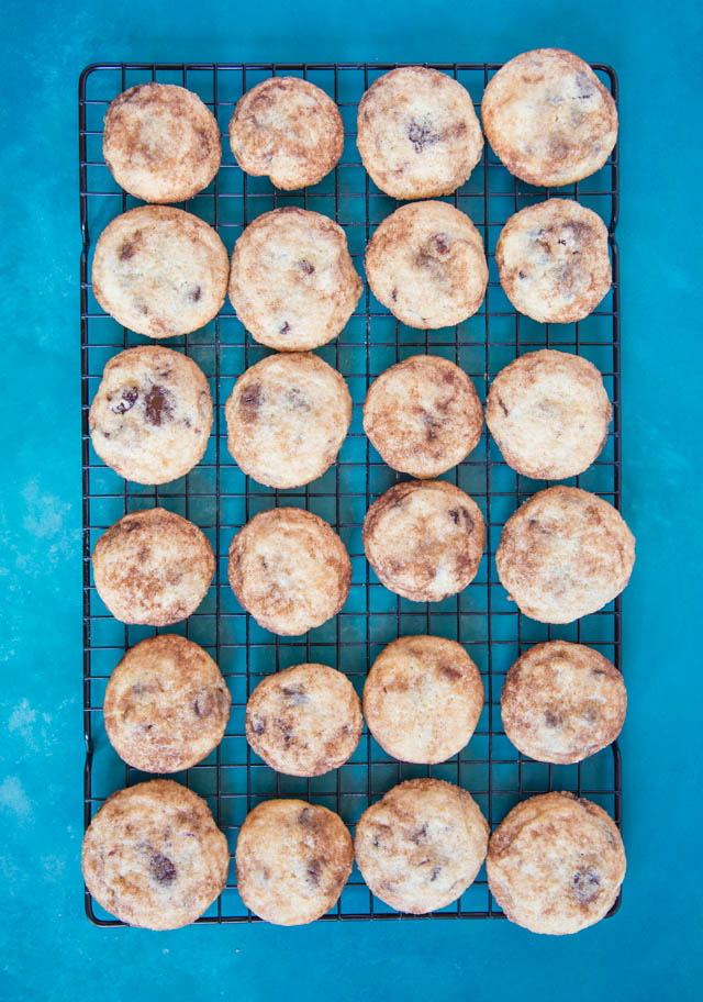 Delicious cinnamon dusted snickerdoodle biscuits with a twist - cranberry and chocolate chips. Perfect for Christmas!