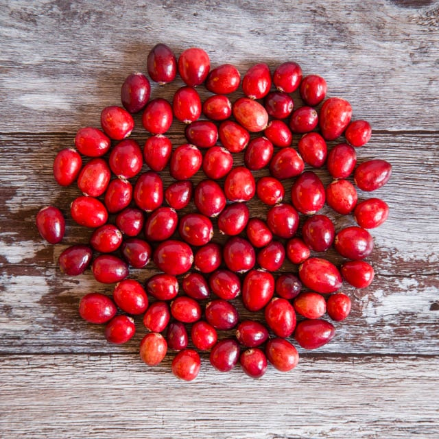 Cranberries on a dark wood background - square