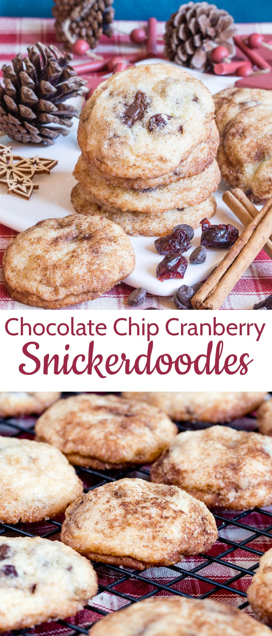 Stacked cranberry and chocolate snickerdoodles dusted with cinnamon and surrounded by cinnamon sticks, dried cranberries, and pine cones on a red and white checked cloth with a text overlay.