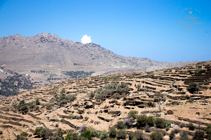 Typical terraced landscape on Tinos at the museum of Marble Crafts Pyrgos
