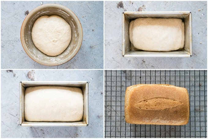 A four picture collage of the stages of making bread. Risen dough, proofing, a baked loaf.