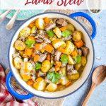 Casserole dish full of leftover lamb stew