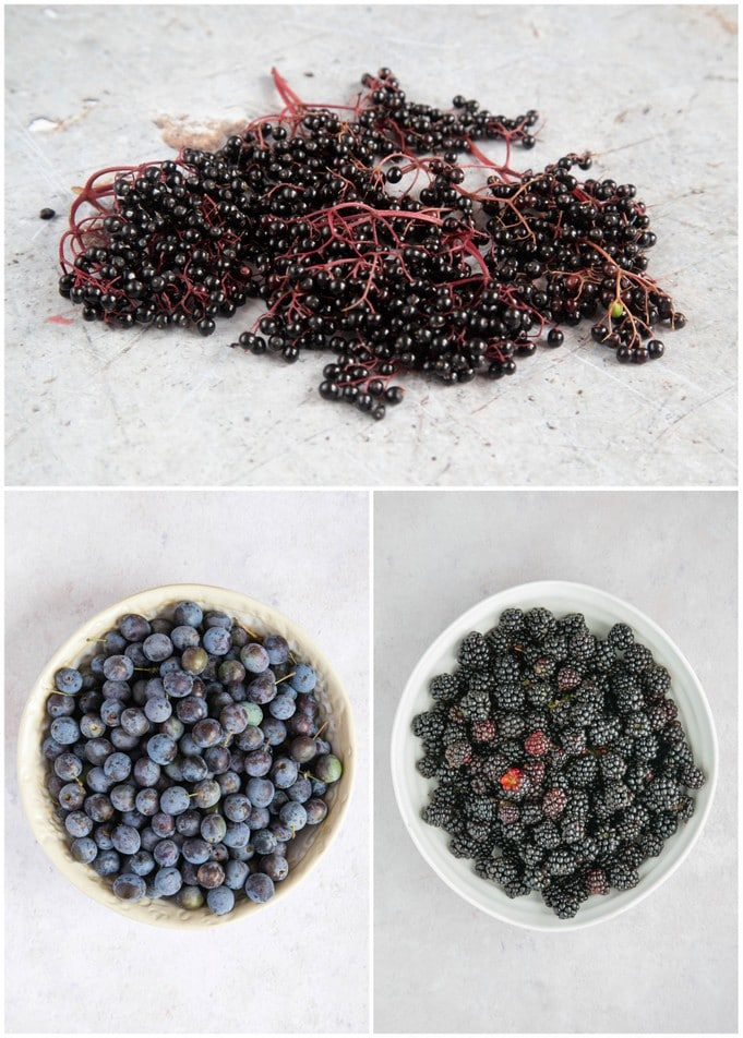 A collage of three pictures showing elderberries, sloes and blackberries.
