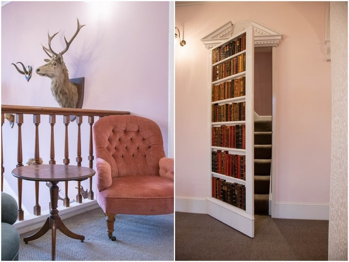 The landing - taxidermy, and a hidden staircase.