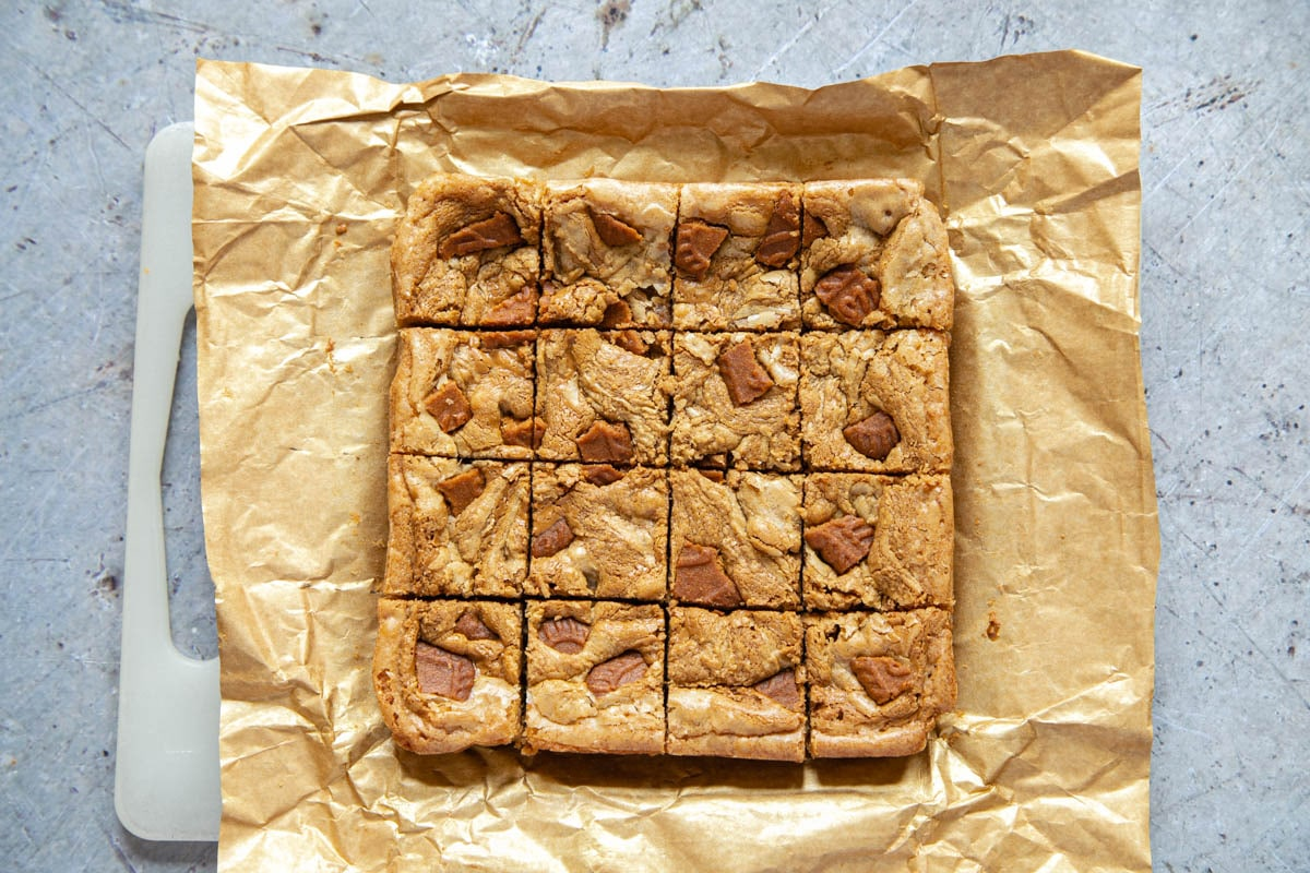 Cooled blondies have been cut into 16 squares. They are still sitting on the parchment paper.